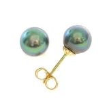 Boucles perles Tahiti or jaune Réf. 371